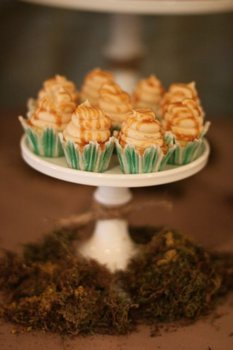 Reception, Flowers & Decor, Cakes, green, brown, cake, Table, Inspiration board, Cup, Moss, Sweets
