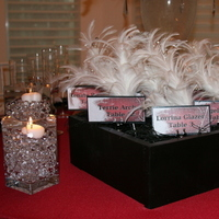 Beauty, Reception, Flowers & Decor, white, red, black, Feathers, Flowers, Cards, Escort, Place, Inspiration board