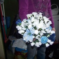 Flowers & Decor, blue, Flowers