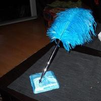 Beauty, white, Feathers, Satin, Stand, Turquoise, Pen, Feather, Ostrich, Claytonandshauna