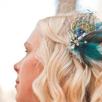 Beauty, blue, gold, Feathers, Hair, Peacock, Piece, Feather