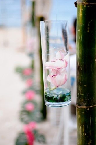 Flowers & Decor, Flowers, Submerged