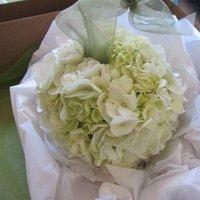 Flowers & Decor, white, green, Flowers, Pomander