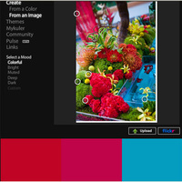 yellow, pink, red, blue, Tropical, Color, Inspiration board
