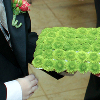 Ceremony, Flowers & Decor, green, Ring, Pillow