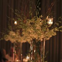 Reception, Flowers & Decor, white, gold, Centerpieces, Flowers, Centerpiece