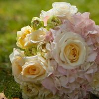 Flowers & Decor, white, yellow, pink, Flowers