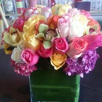 Flowers & Decor, white, yellow, orange, pink, red, purple, blue, green, brown, black, silver, gold, Flowers