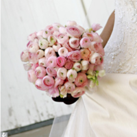 Flowers & Decor, white, pink, green, Flowers