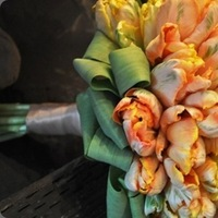 Flowers & Decor, orange, green, Flowers, Tulips, Parrot