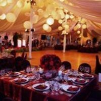 Reception, Flowers & Decor, orange, Tent, Outdoors
