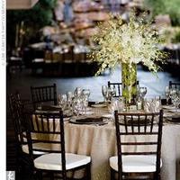 Reception, Flowers & Decor, white, Centerpieces, Centerpiece, Orchid
