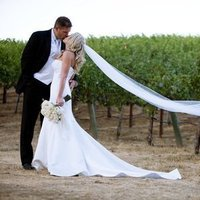 Wedding Dresses, Veils, Fashion, dress, Veil, Outdoor wedding