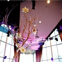 Reception, Flowers & Decor, white, purple, blue, green