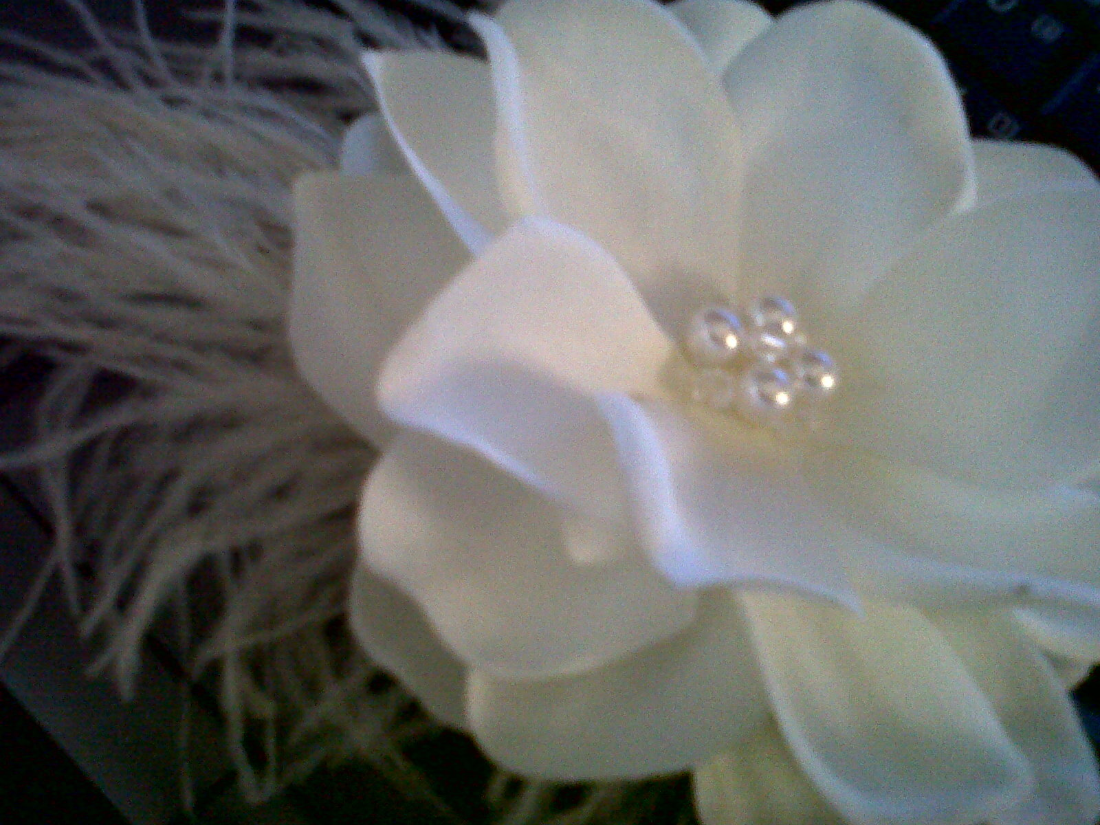 Beauty, Flowers & Decor, Jewelry, ivory, Flowers, Hair, Fascinator