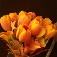 Flowers & Decor, orange, Flowers, Inspiration board