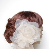 Beauty, Flowers & Decor, Veils, Fashion, Updo, Flower, Veil, Wedding, Hair, Birdcage, Me, Hairflower, Fascinate