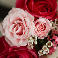 Flowers & Decor, pink, green, brown, silver, Flowers