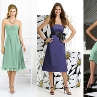 Bridesmaids, Bridesmaids Dresses, Fashion, purple, green