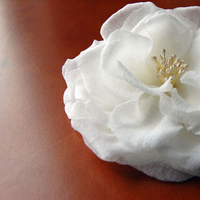 Beauty, Jewelry, white, Bride, Hair, Accessory, Fascinator
