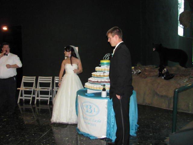 Reception, Flowers & Decor, Cakes, blue, cake, Cupcakes