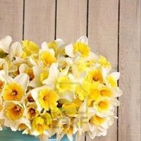 Flowers & Decor, yellow, blue, Flowers, Inspiration board