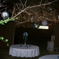 Reception, Flowers & Decor, blue, Barn