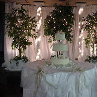 Reception, Flowers & Decor, Cakes, white, green, cake, Wedding