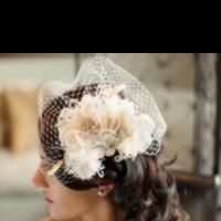 Beauty, Jewelry, Veils, Fashion, Veil, Hair, Birdcage