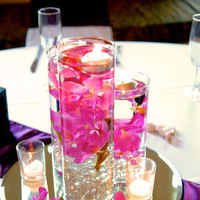Reception, Flowers & Decor, pink, purple, Centerpieces, Flowers, Centerpiece, Orchid