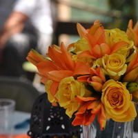 Flowers & Decor, orange, blue, green, Flowers
