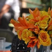Flowers & Decor, orange, blue, green, Flowers
