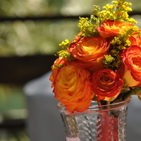 Flowers & Decor, yellow, orange, blue, green, Flowers