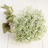 Ceremony, Reception, Flowers & Decor, yellow, Ceremony Flowers, Flowers