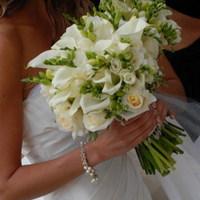 Flowers & Decor, white, green, Flowers