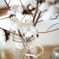 Reception, Flowers & Decor, white, Flowers