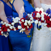 Flowers & Decor, Photography, white, red, blue, Flowers, Hollis, Cari