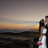 Flowers & Decor, Wedding Dresses, Fashion, orange, pink, red, purple, green, dress, Flowers, Inspiration board, Flower Wedding Dresses