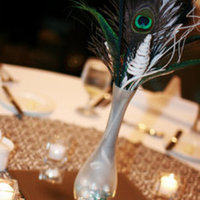 Beauty, Reception, Flowers & Decor, white, blue, green, brown, black, Feathers, Peacock