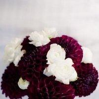 Flowers & Decor, red, purple, Flowers