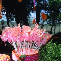 Reception, Flowers & Decor, Favors & Gifts, Cakes, yellow, orange, pink, purple, green, cake, Favors, Flowers
