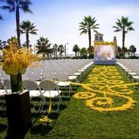 Ceremony, Flowers & Decor, yellow, Ceremony Flowers, Flowers, Petals, Aisle runner, Yellow brick road