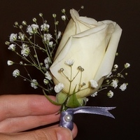 DIY, Flowers & Decor, Boutonnieres, Flowers, Boutonniere