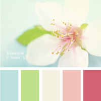 pink, blue, green, brown, Inspiration board