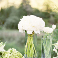 Flowers & Decor, white, green, Flowers