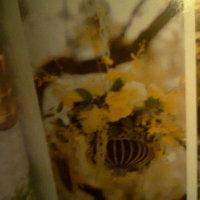 Reception, Flowers & Decor, Tree, Chandelier