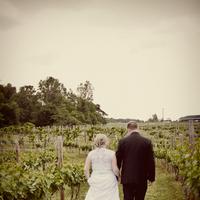 Flowers & Decor, Vineyard, Bride, Groom, And