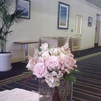 Flowers & Decor, pink, Flowers