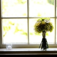 Flowers & Decor, white, yellow, green, black, Flowers