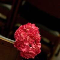 Ceremony, Flowers & Decor, pink, black